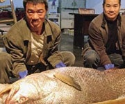 Chinese Fisherman Sells Highly Endangered Species for $473K