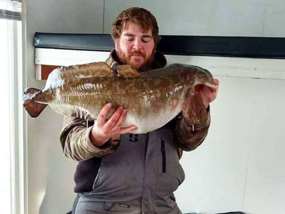 Minnesota Fisherman Lands Record-Breaking Eelpout