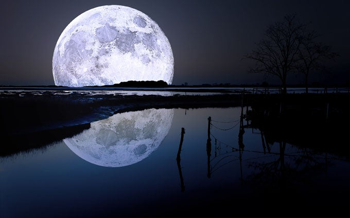 Don't Pass on the Chance to Fish During A Full Moon