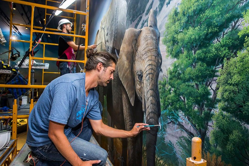 Africa diorama Wonders of Wildlife National Museum & Aquarium