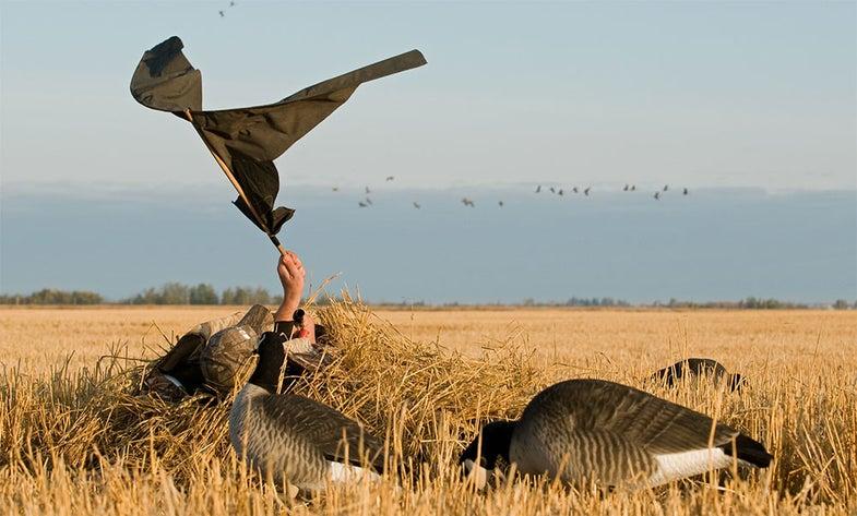 geese hunting decoy flag