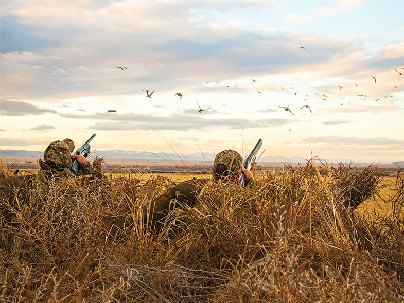 Hunters aiming at a flock over a field