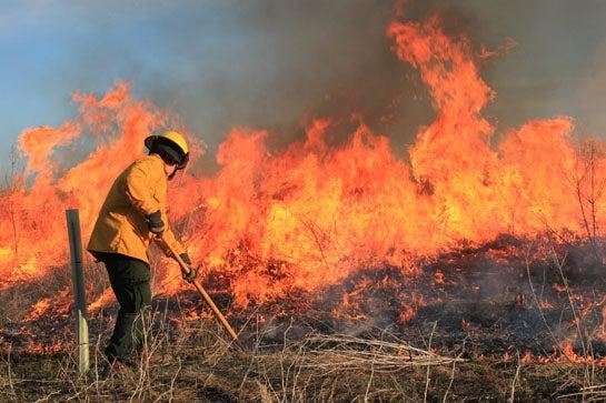How to Fire Up Prairie Buck Habitat