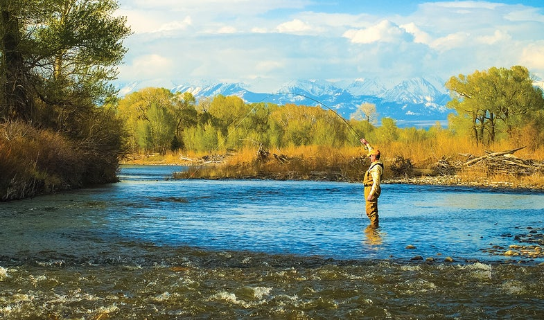 early-summer trout, how to catch early-summer trout, summer trout,