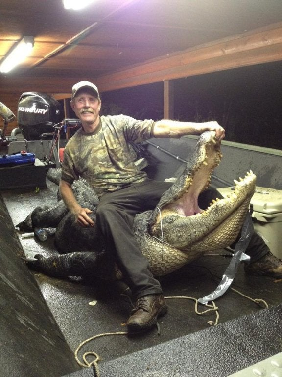Photos: 13-Foot Alligator Is New Arkansas State Record