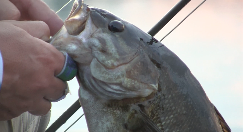 Fishing Quetico Provincial Park: Smallmouth on the Fly