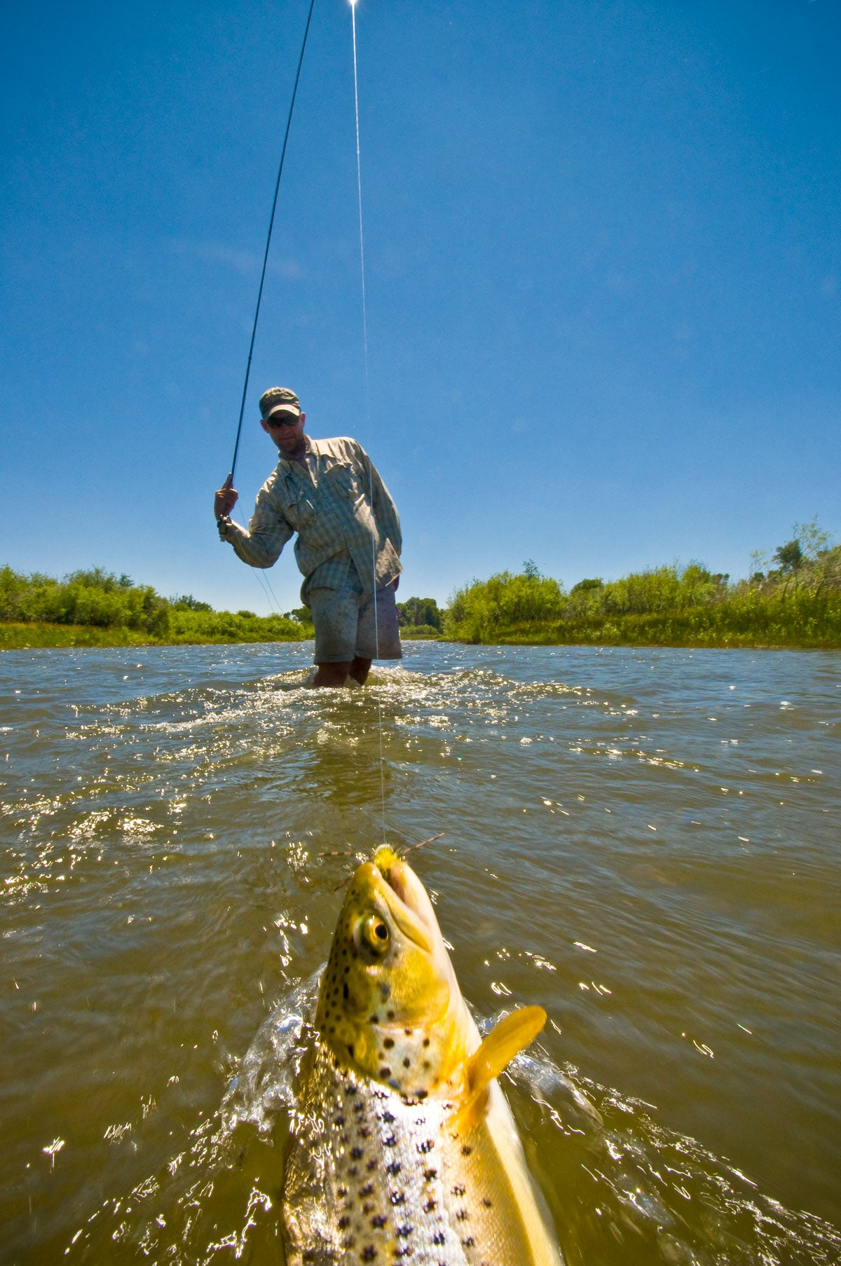 How to Choose Leaders and Tippets when Fly Fishing