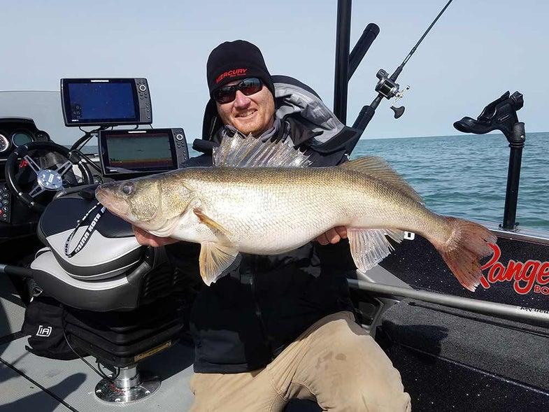 angler holding giant walleye