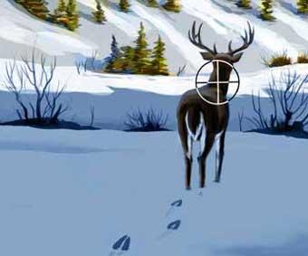 Ten Toughest Shots on Deer