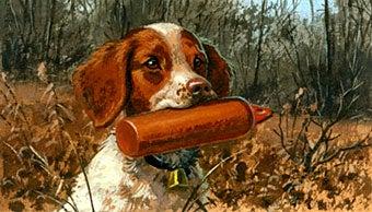 Dog Training Tips from Jerome B. Robinson