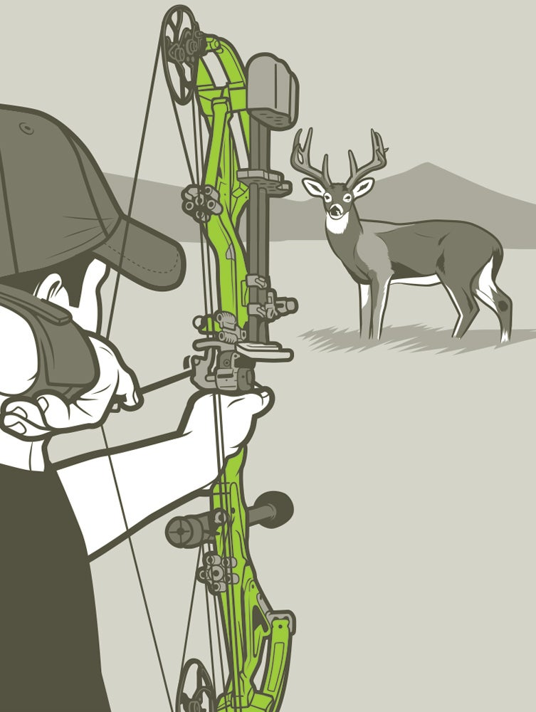 compound bow whitetail illustration