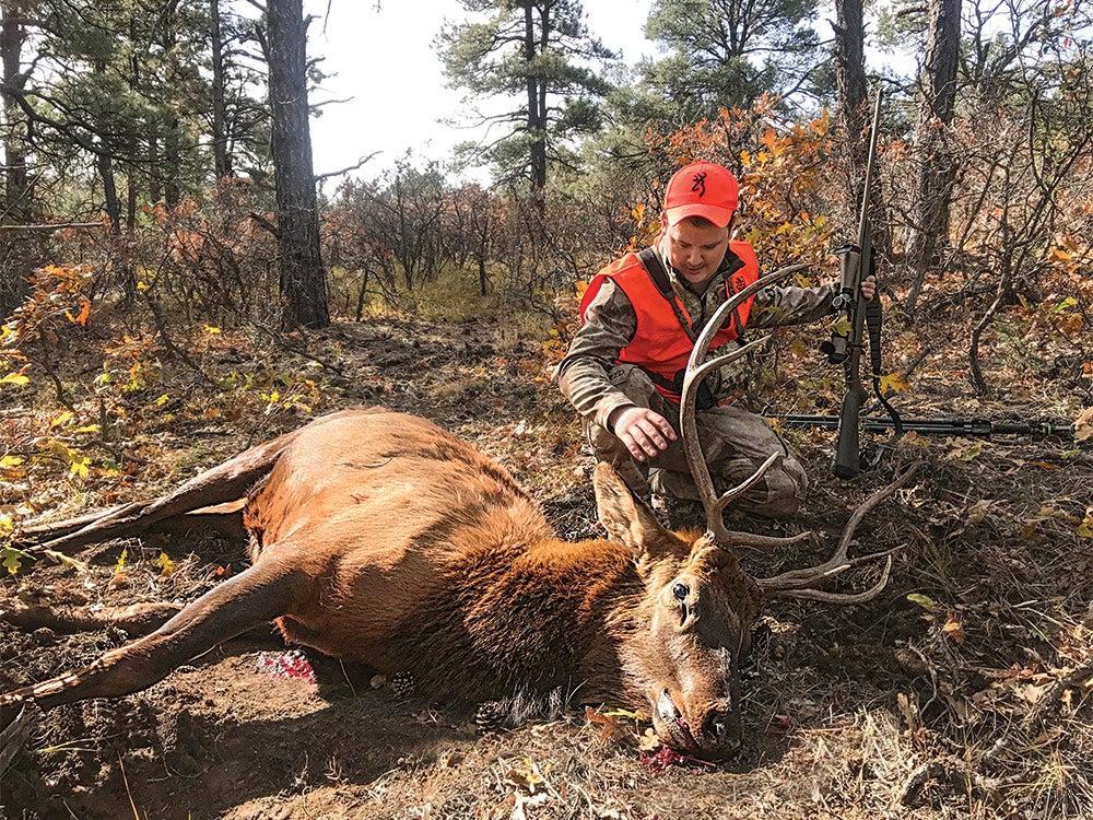 hunter kneeling next to elk in a forest