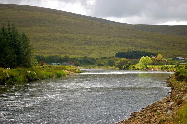 Fly Fishing the Emerald Isle: Salmon, Trout and Guinness on the Rivers and Lochs of Ireland