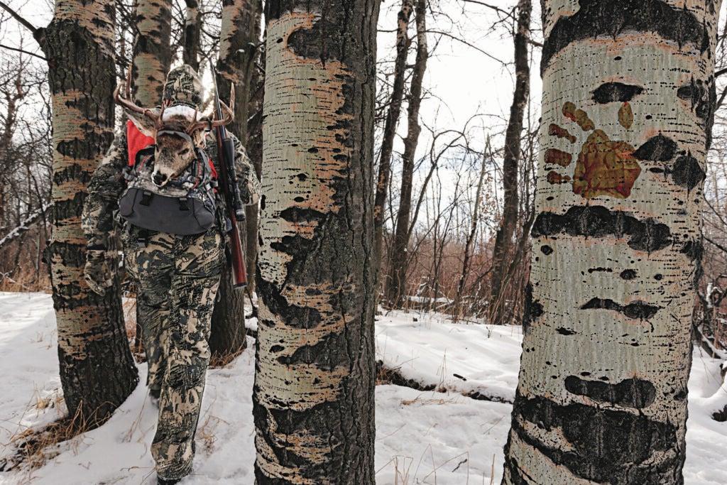 hunter in woods