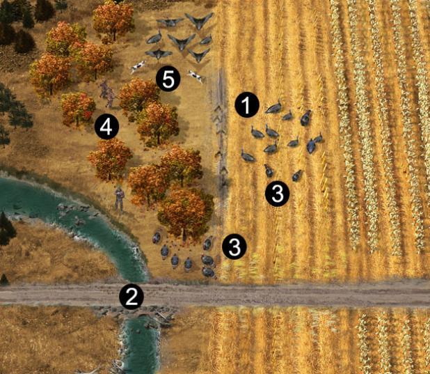 5 Tips to Make Finding Fall Turkeys Simpler