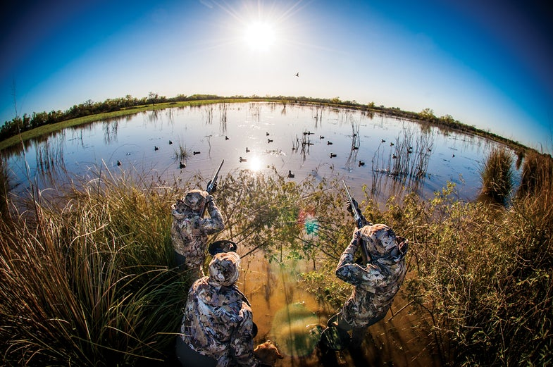 Bluewing Weather: Welcome Back Duck Season with Early Teal
