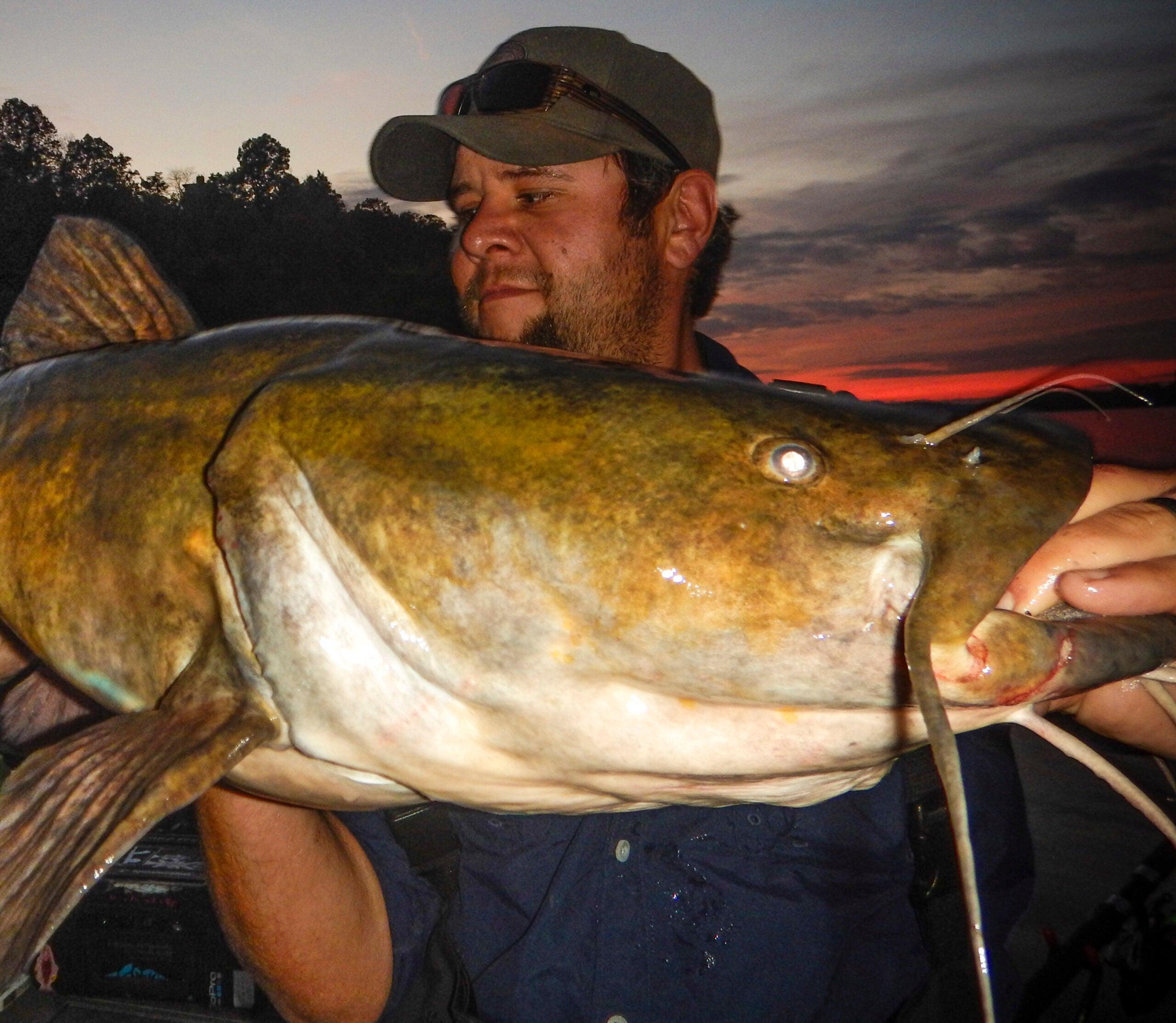 Hook Shots: Susquehanna Flathead Beatdown