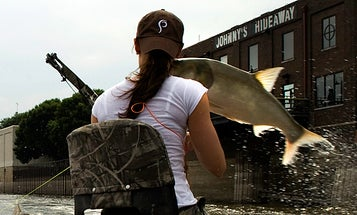 Extreme Aerial Bowfishing: Jumping Carp Breaks Woman's Jaw in Illinois