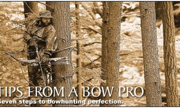 Tips From a Bow Pro