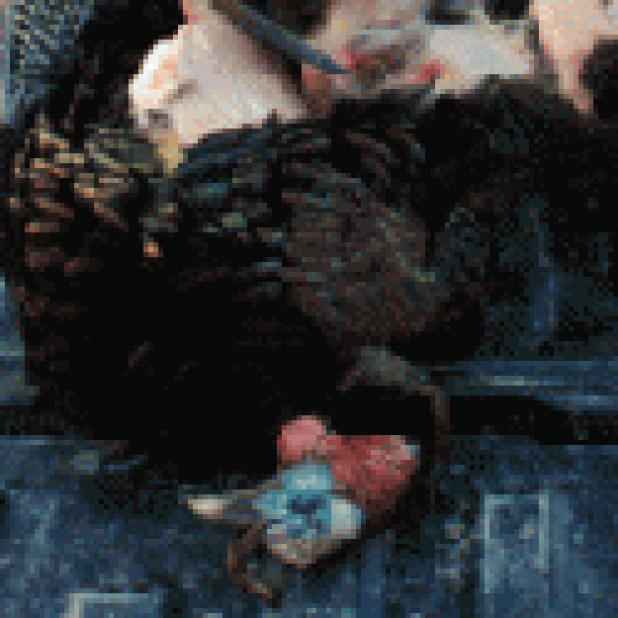 httpswww.fieldandstream.comsitesfieldandstream.comfilesimport2014importArticleembedMushroom_Milk_Braised_Turkey_Legs.jpg