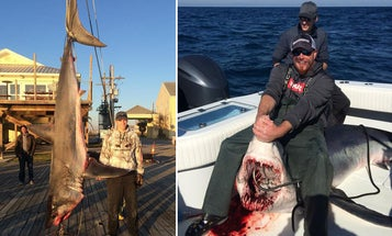 Angler Boats Fourth-Largest Mako in Louisiana After Epic Battle