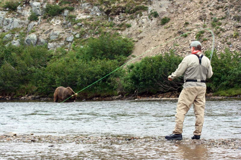 Photos From an FS Reader: Alaskan Grizzly Pre-Winter Feeding Frenzy