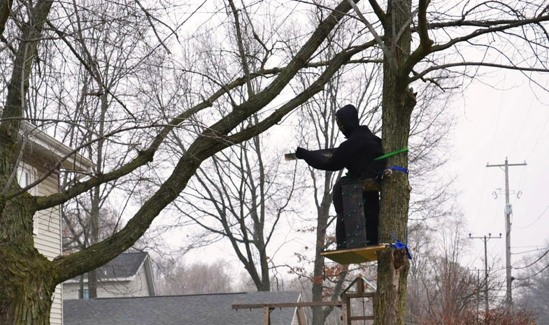 Hunting-Themed Christmas Lights Cause Stir in Michigan