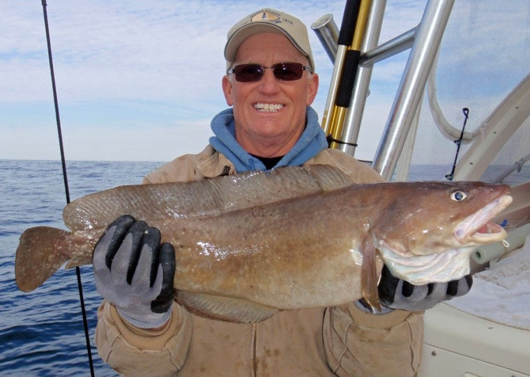 The World-Record Hake That Was Almost Hake Fritters