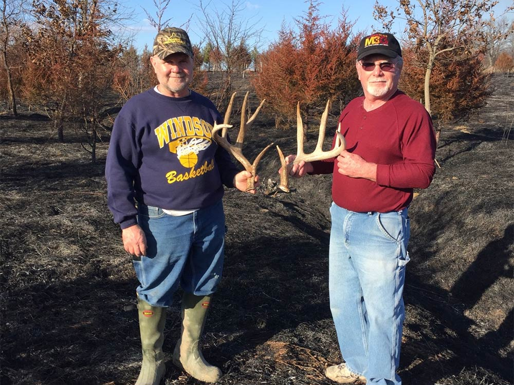 Antler shed found after burn