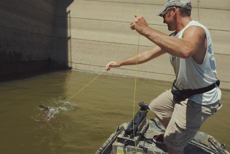 Take the Family Bowfishing