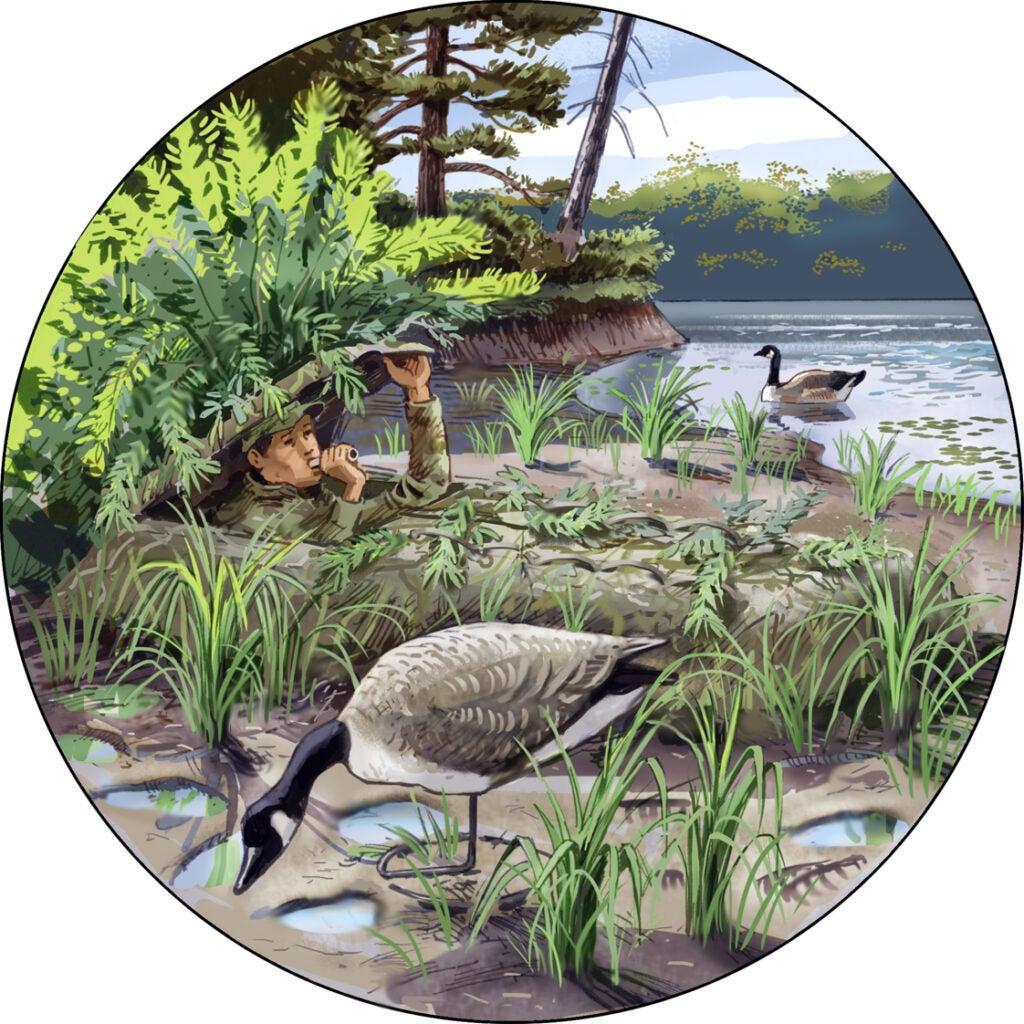 goose hunting,