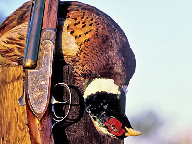 Remove the Best Meat Off Your Gamebirds in Seconds