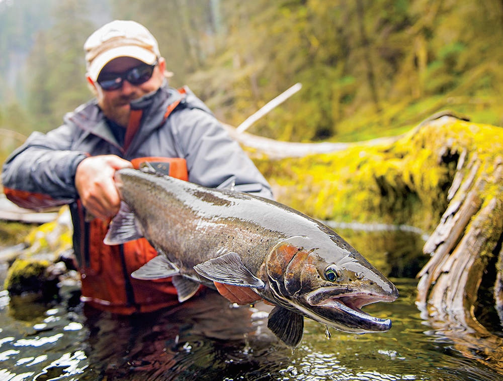 steelhead fishing, fishing,