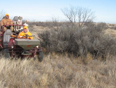 httpswww.fieldandstream.comsitesfieldandstream.comfilesimport2014importImage2009photo23Quail_16.jpg