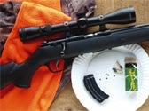 Whitetail IQ Test:  Rifle Hunting