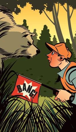 guns, hunting, bear hunting, shooting, david e. petzal