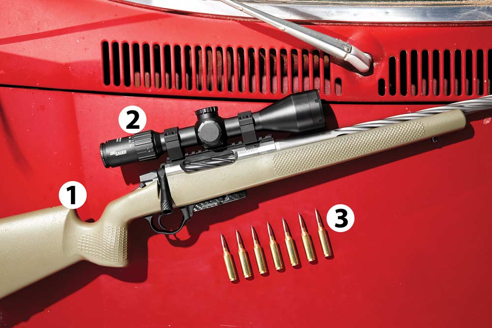 best rifle scope and ammo