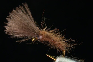 How Can this Simple Little Fly Catch So Many Trout?