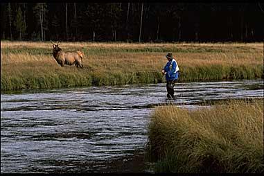 httpswww.fieldandstream.comsitesfieldandstream.comfilesimport2014importImage2008legacy1000232763.jpg