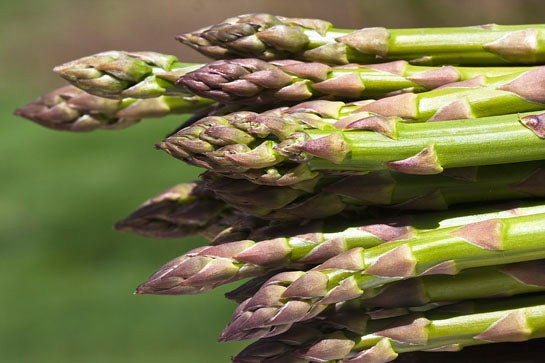 Recipe: Asparagus and Morel Mushrooms in Oyster Sauce