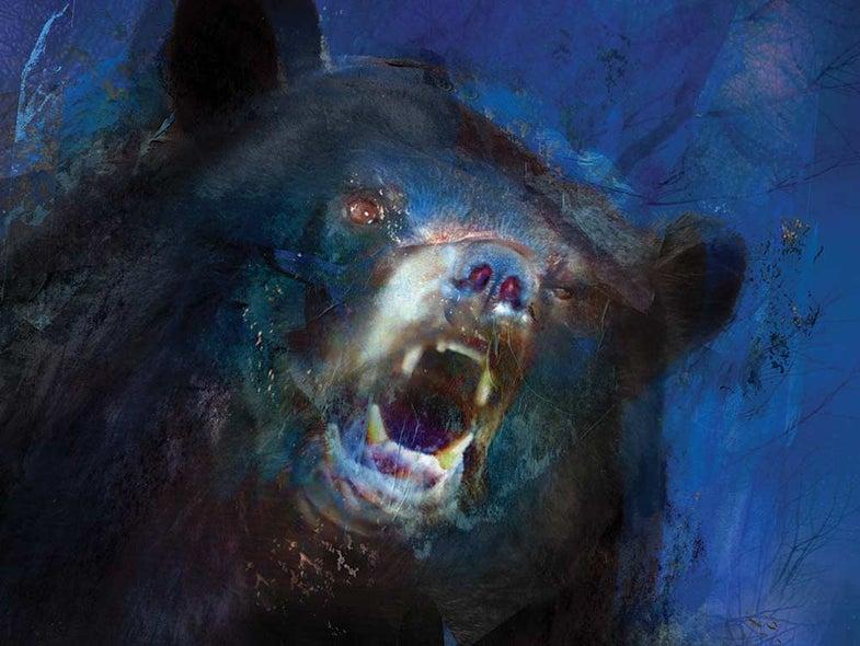 bear hunting manitoba black bear camp