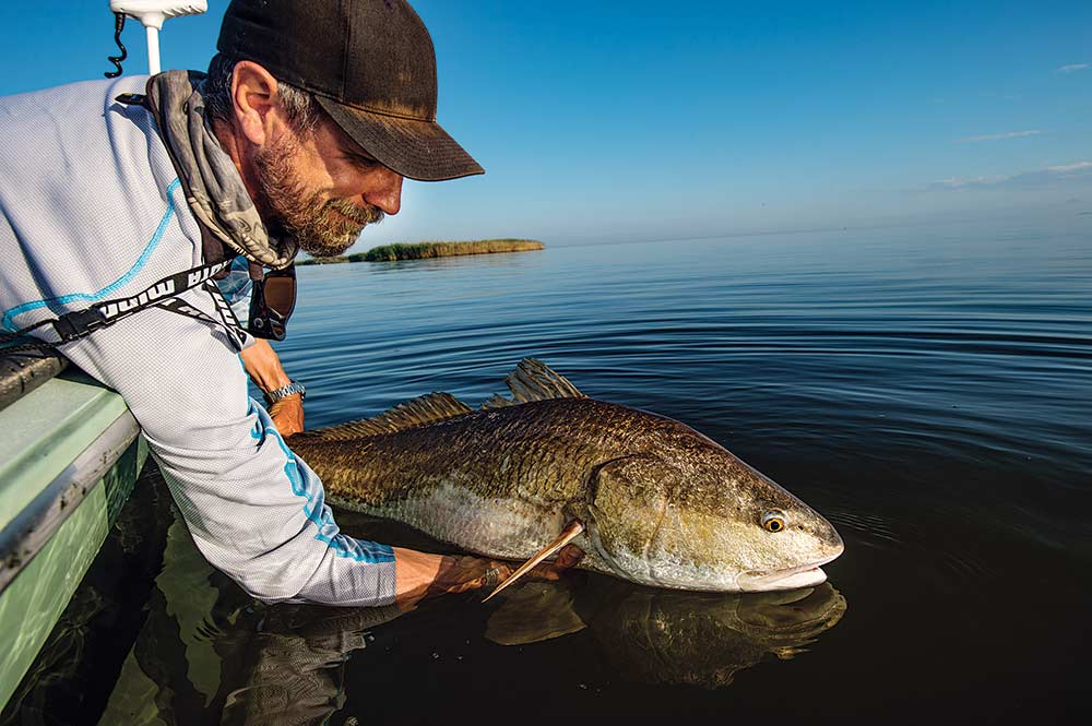 angler pulling fish from water