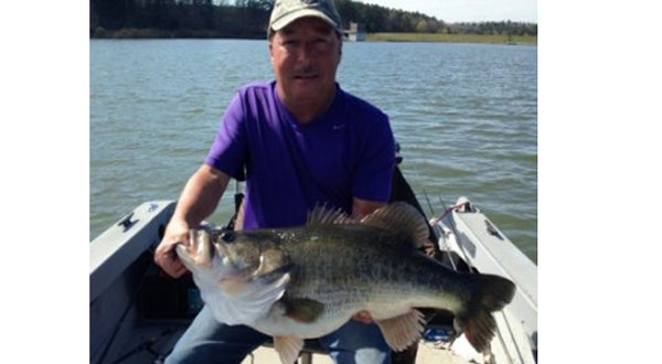 Georgia Angler Catches 17-Pound Bass, Fourth Biggest in State History