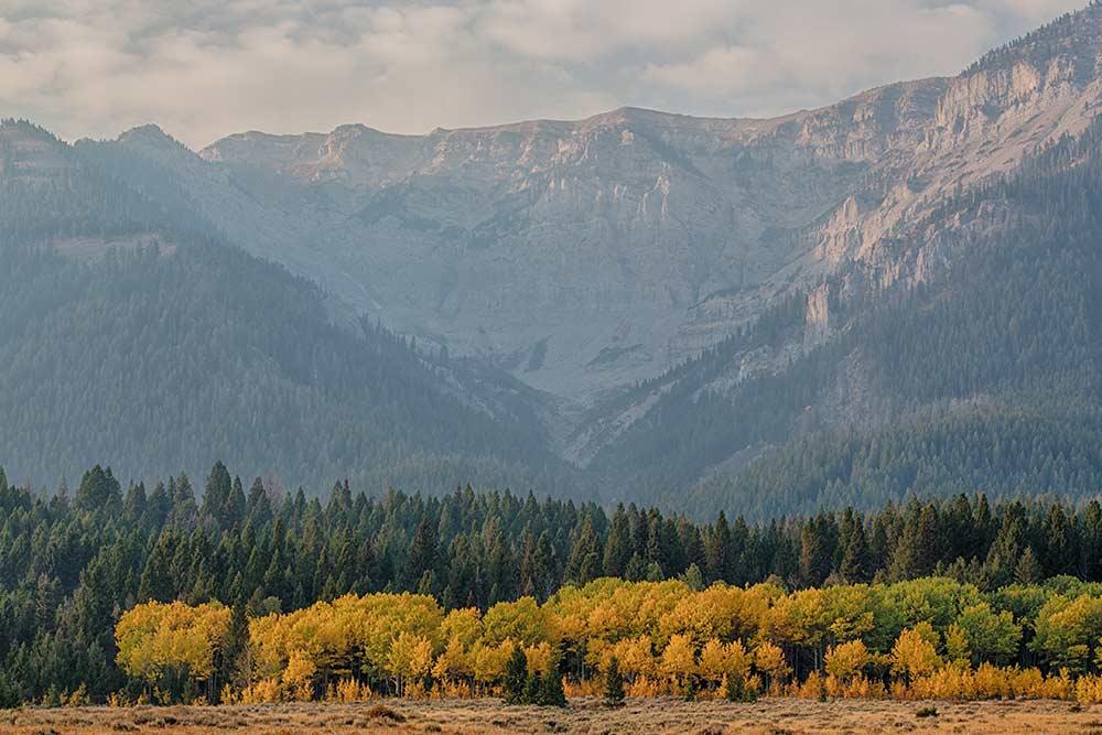 centennial mountains wilderness area