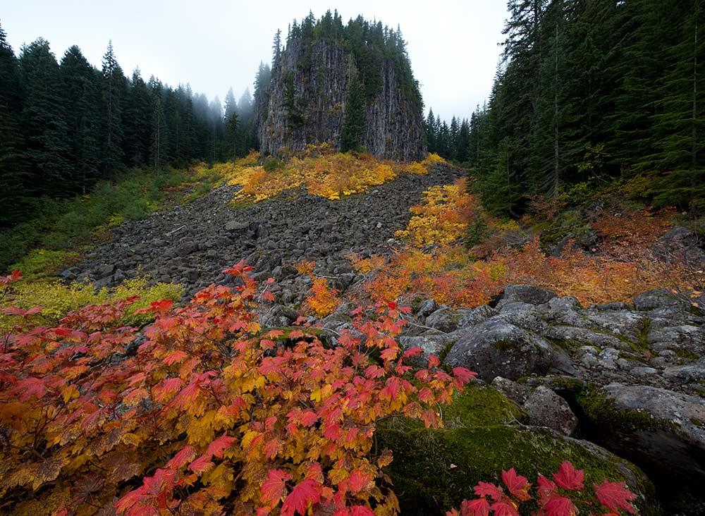 table rocks wilderness foliage