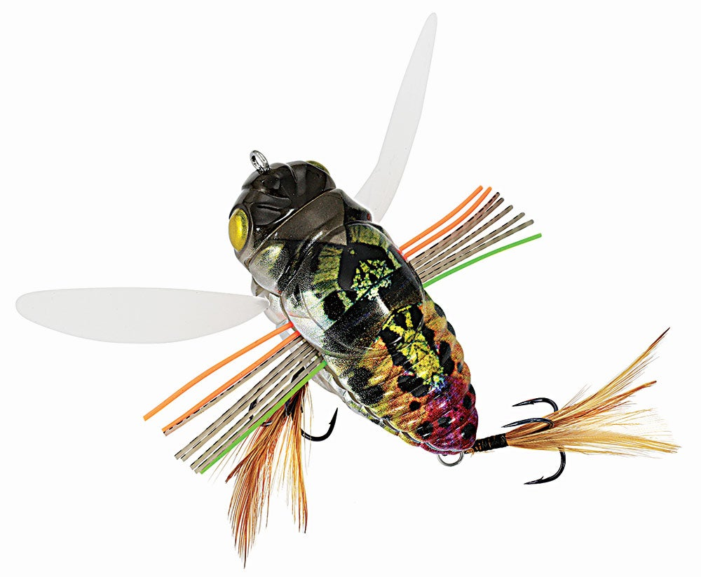 Duo Realis Dekashinmushi Cicada Bug