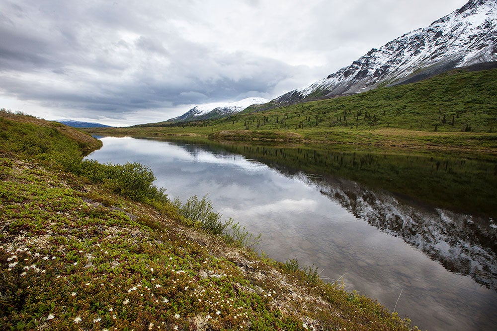 bureau of land management wilderness areas