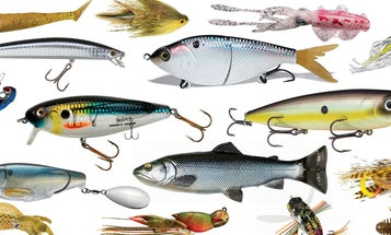 The 20 Best New Fishing Lures and Baits for 2019