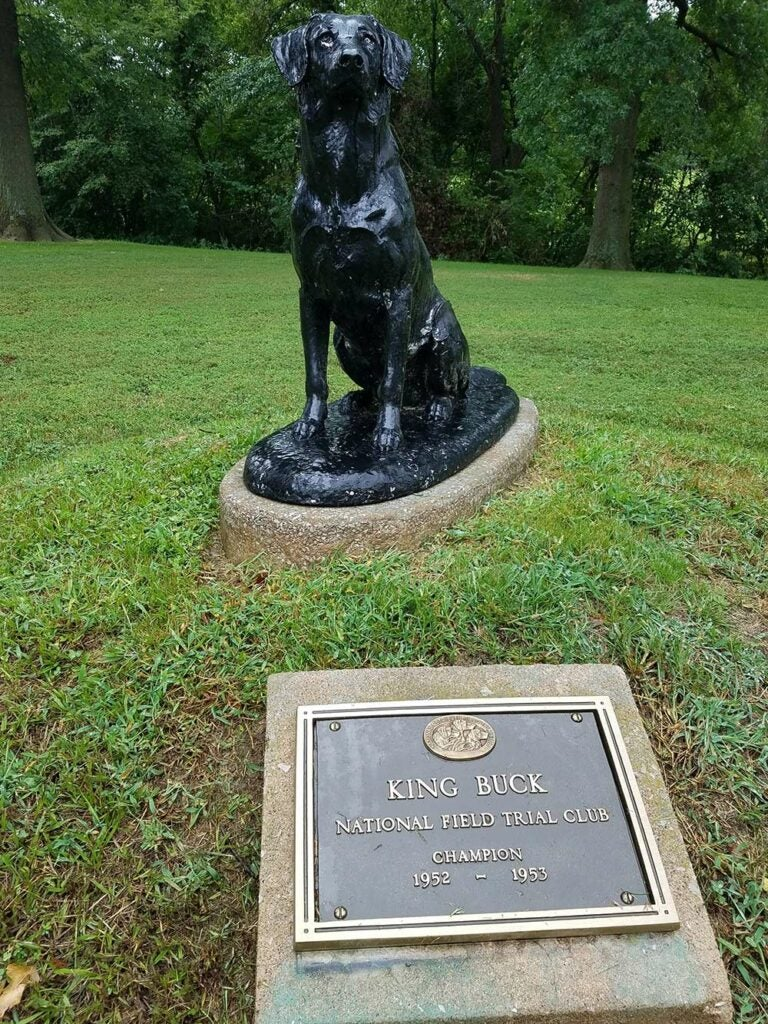 statue of a hunting dog named kng buck