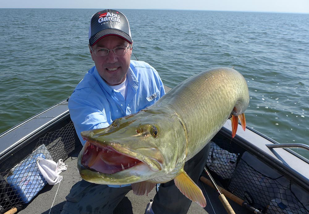The dagger-like teeth of a muskie, slanted toward the throats, designed to grasp and puncture.